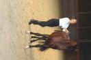 PferdeSportVergnügen 2011